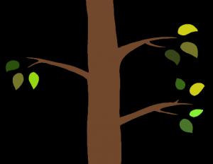 Lemetszett faágak mákvirág